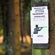 Announcement of hunting season in forest, Ardennes, Belgium